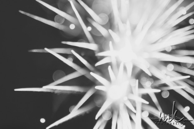 Megan Kelly, Fireworks, Creative, Long Exposure, 4th of July, America, Bokeh