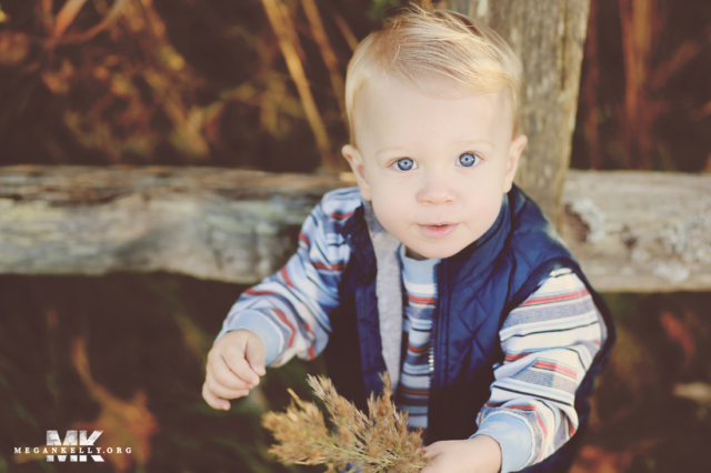 Megan Kelly, Cook Family, Pictures, Photography, Fall, Michigan, Leaves, Canton, Dearborn, Southgate