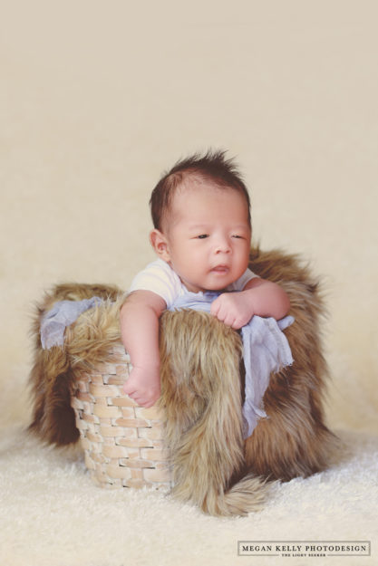 Megan Kelly - Yang Family - New Baby - Canton - Michigan Photographer